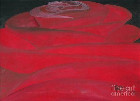 Robert Meszaros - an odd rose...