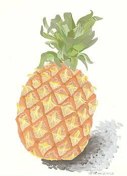 Ananas No.2 by Roswitha Schmuecker