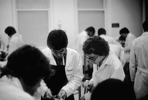 Anatomy Lab No2  University of Chicago 1976 by Joseph Duba