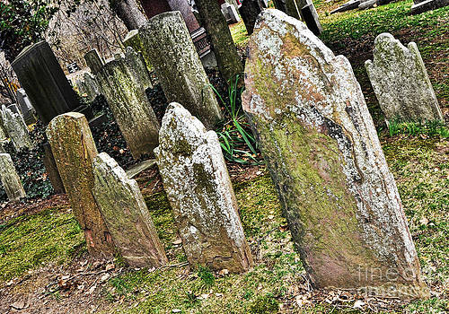 Anne Ferguson - Ancient Gravestones 2