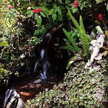 Angel backyard by Dani Pimenta