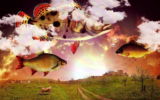 Angel Fish by Mark Ashkenazi