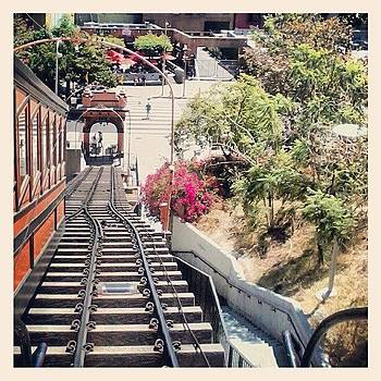 Angel's Flight En Route To Moca by Christy Borgman