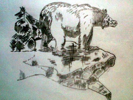 Angry Bear by Kapil Sharwa