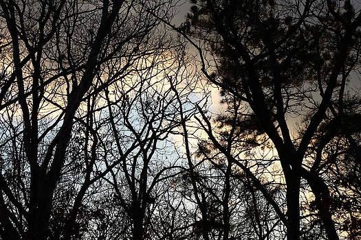 Angry Sky by LillyAnn Venturino