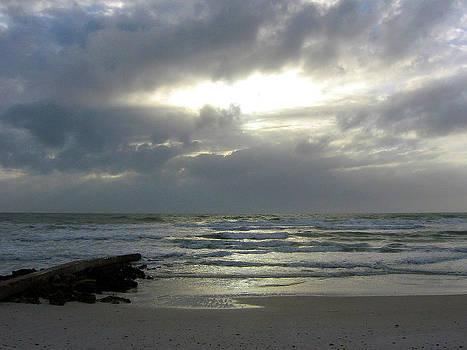 Anna Maria Beach II by J R Baldini M Photog Cr