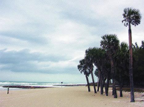 Anna Maria Beach III by J R Baldini M Photog Cr