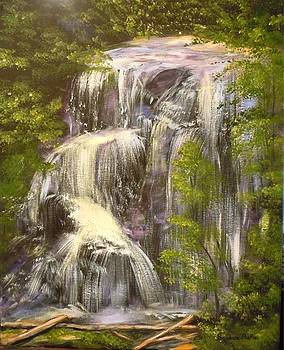 Anna Ruby Falls by Barbara Pirkle
