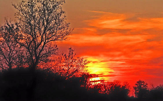 Another November Sunset by Victoria Sheldon