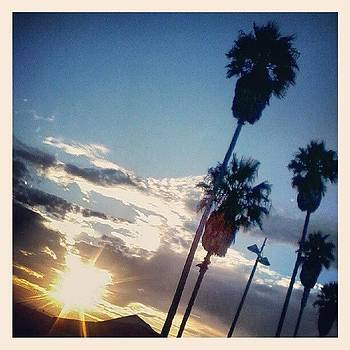 Another Perfect Day... #ilovela  #venice by Christy Borgman
