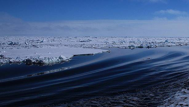 Antarctic Landscape 100 by David Barringhaus
