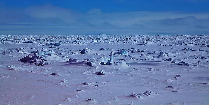 Antarctic Landscape 105 by David Barringhaus