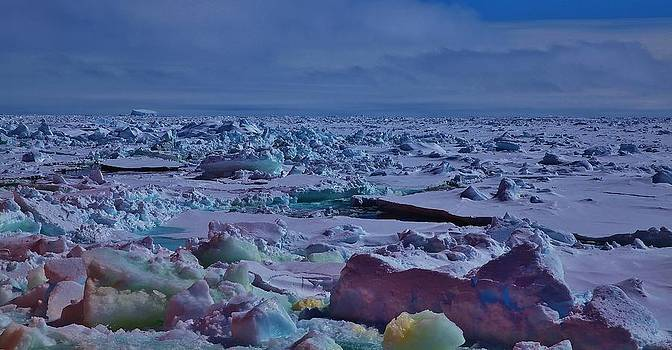 Antarctic Landscape 106 by David Barringhaus