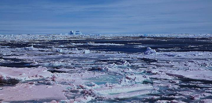 Antarctic Landscape 108 by David Barringhaus