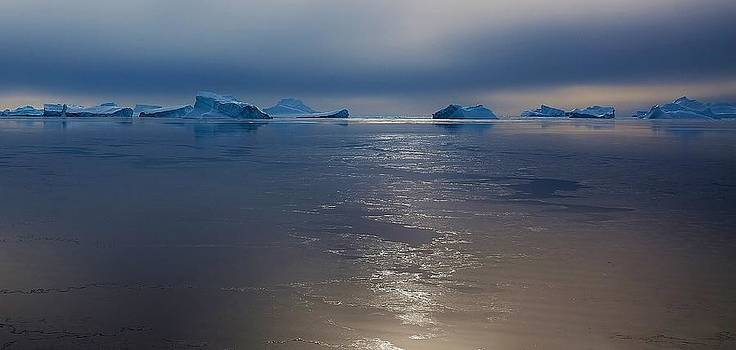Antarctic Landscape 113 by David Barringhaus