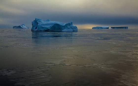 Antarctic Landscape 122 by David Barringhaus
