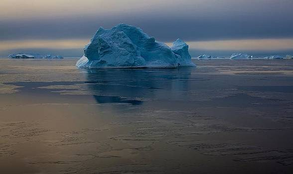 Antarctic Landscape 123 by David Barringhaus
