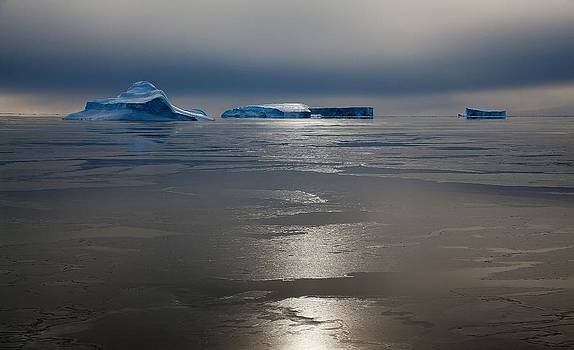 Antarctic Landscape 125 by David Barringhaus