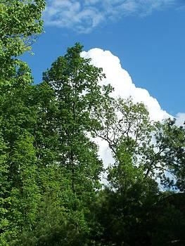 Anvil Cloud by Lila Mattison