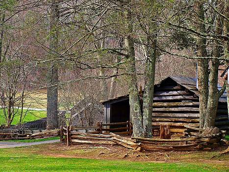 Jim Goldseth - Appalachian Cabin