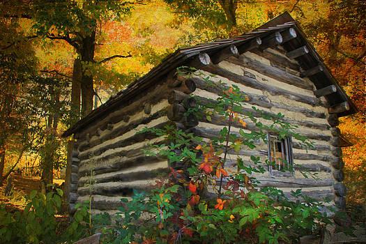 Appalachian Dream Home by Christine Annas
