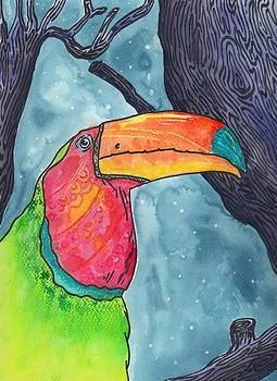 Appalachian Night Toucan by Mel  Cartaya