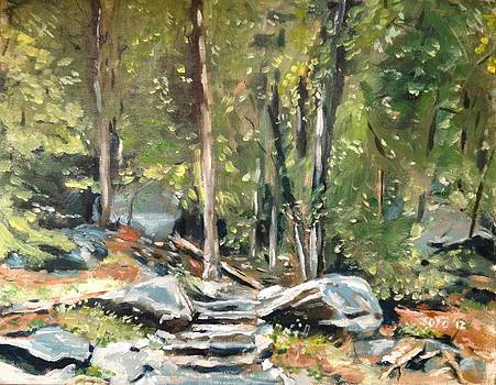 Appalachian Trail by Victor SOTO