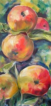 Apple Delight by Judy  Rogan