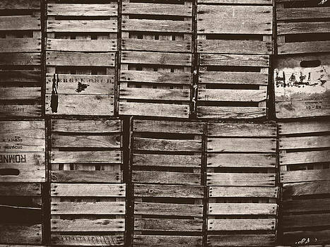 Apple Harvest Crates by Tom Bush IV