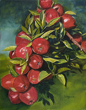 Apple Orchard by Virginia Butler
