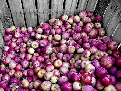 Apples by Bennie Reynolds