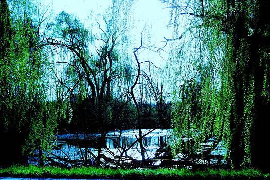 Aquamarine Dream by Micheal Landers