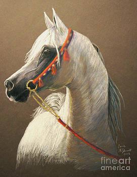 Arabian by Corrie McDermott