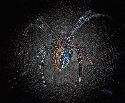 Patrick Witz - Arachnophobia
