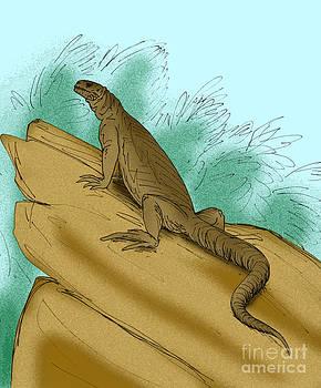 Armandisaurus explorator by Stanton Fink