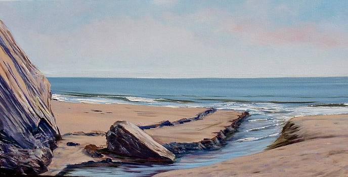 Arroyo Burro Creek at Hendry's Beach by Jeffrey Campbell
