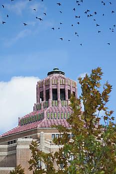 Asheville City Hall by Sandi Blood