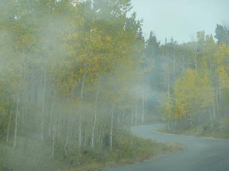 Angela Hansen - Aspens and Misty Road