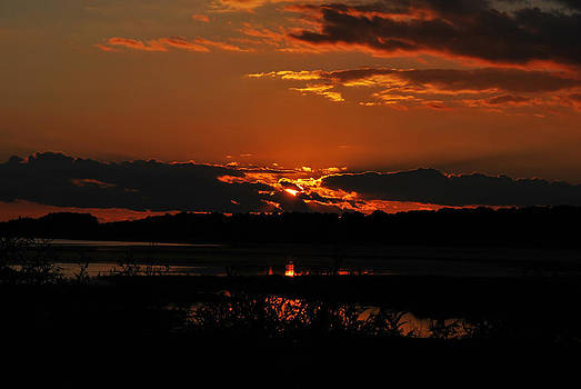 Assateague Sunset by Lori Tambakis