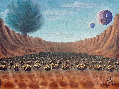 Asteroid Field from Arboregal by Dumitru Sandru