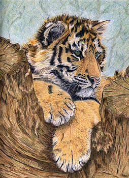 At Rest by Karen Curley