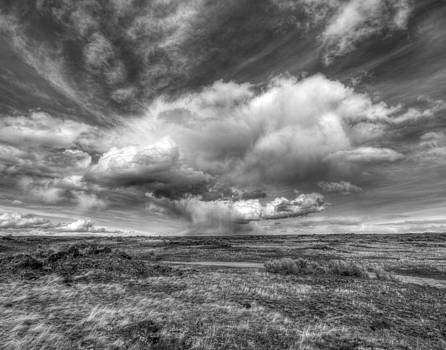 Atomic Desert by Rick Otto