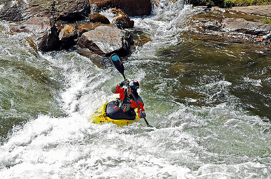 Attacking the Rapids by Susan Leggett