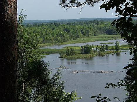 Au Sable River 3 by Jennifer  King