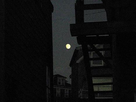 August Moon by J R Baldini M Photog Cr
