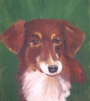Australian Shepherd by Barbara Sudik