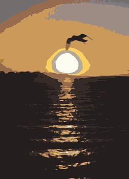 Ramona Johnston - Australian Sunset