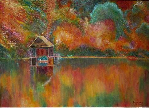 Autum colors by Rashid Hamza