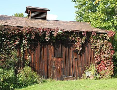 Autumn Antique Barn #3 by Donna Bosela