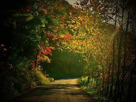 Autumn Arch by Joyce Kimble Smith